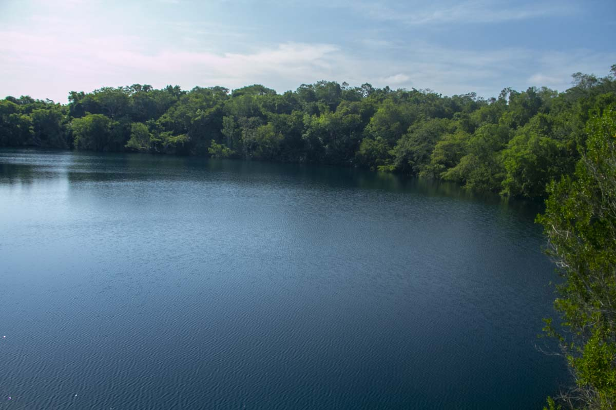 cuidar la laguna